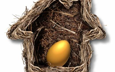 Building a Nest Egg: Teaching Your Kids About Financial Independence